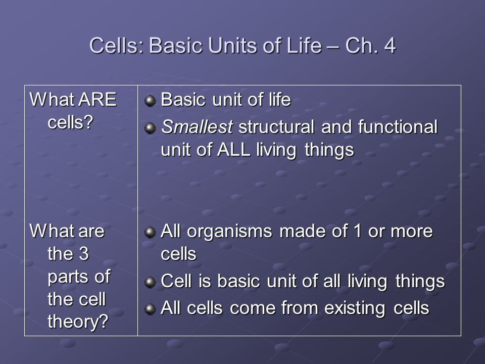 Cells: Basic Units of Life – Ch. 4