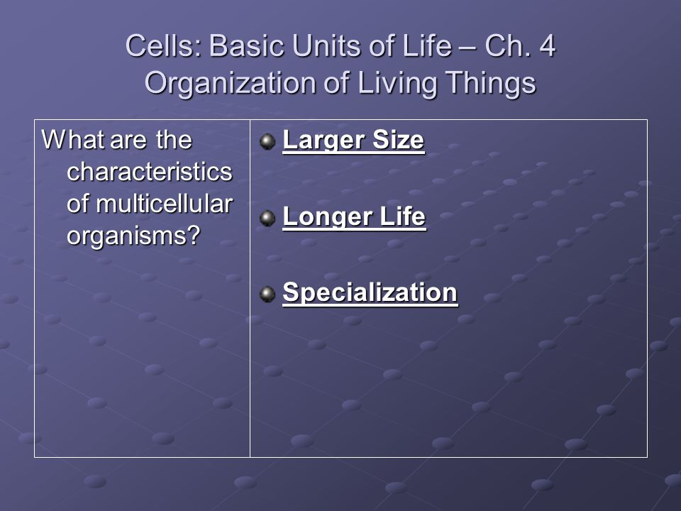 Cells: Basic Units of Life – Ch. 4 Organization of Living Things