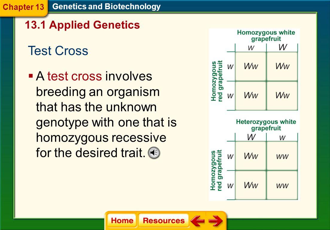 Chapter 13 Genetics and Biotechnology. 13.1 Applied Genetics. Test Cross.
