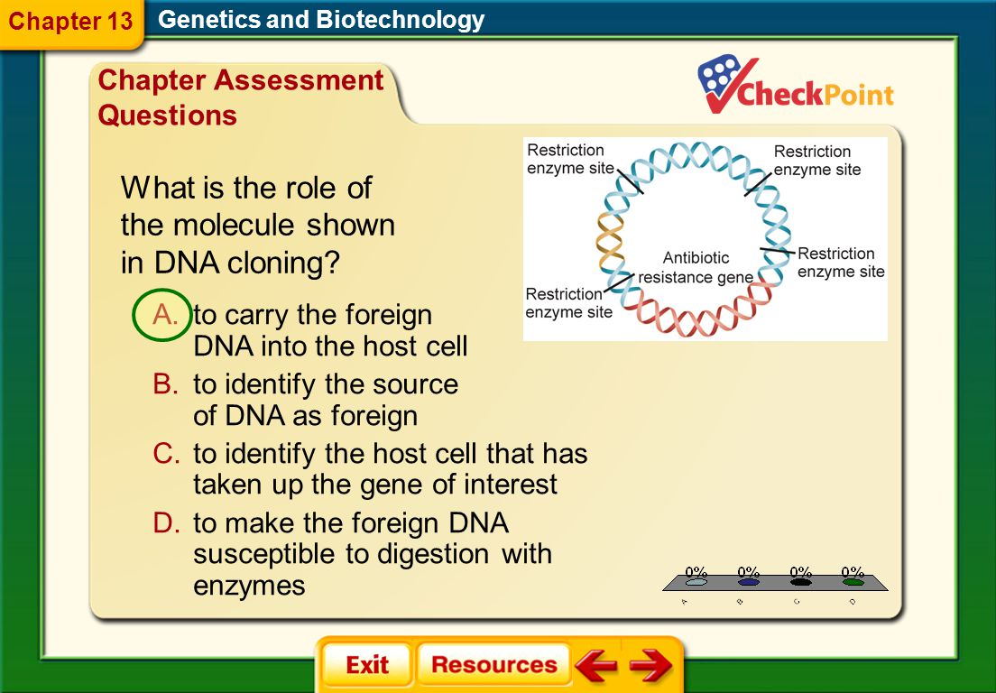 What is the role of the molecule shown in DNA cloning