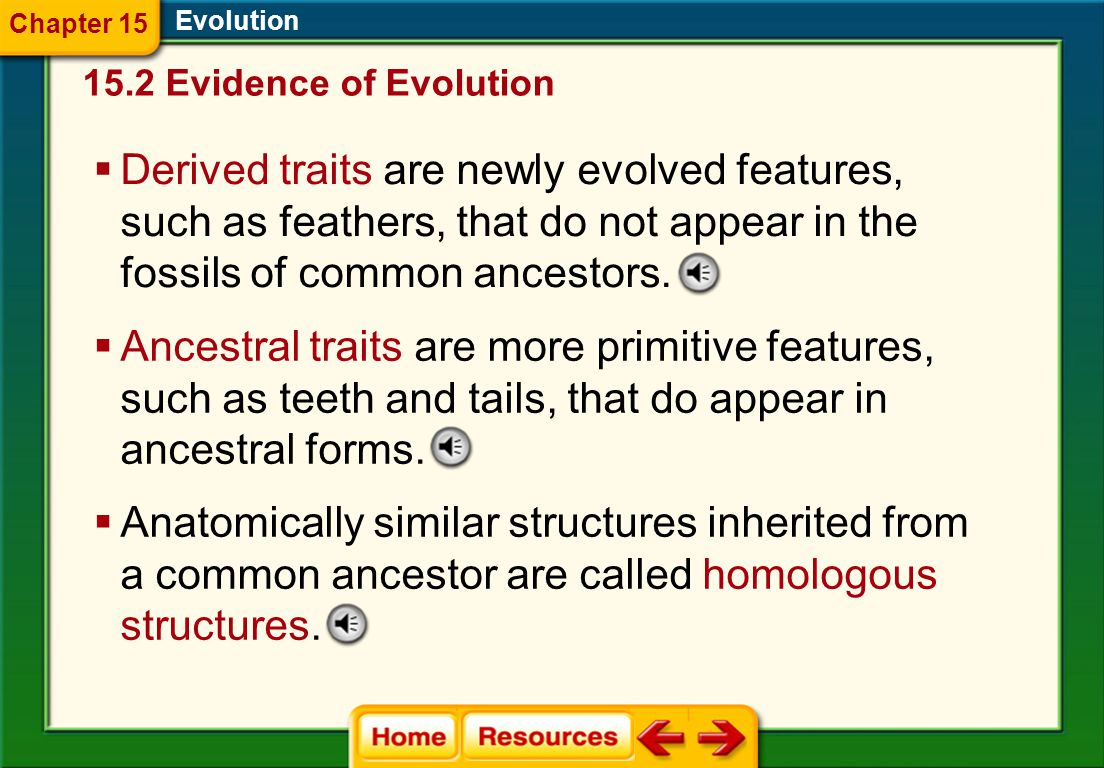 Chapter 15 Evolution. 15.2 Evidence of Evolution.