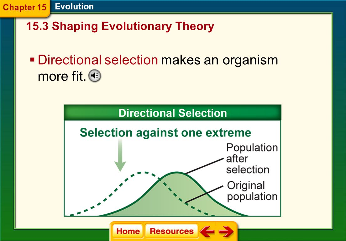 Directional selection makes an organism more fit.