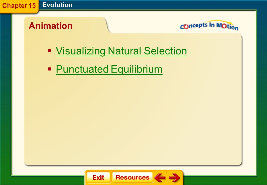 Visualizing Natural Selection Punctuated Equilibrium