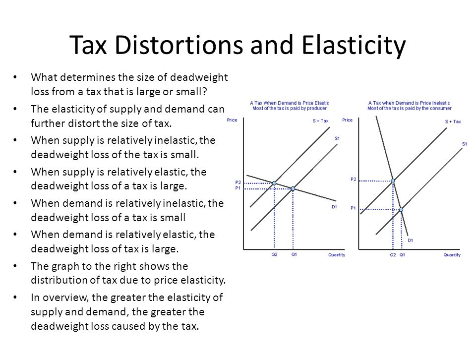 Tax Distortions and Elasticity