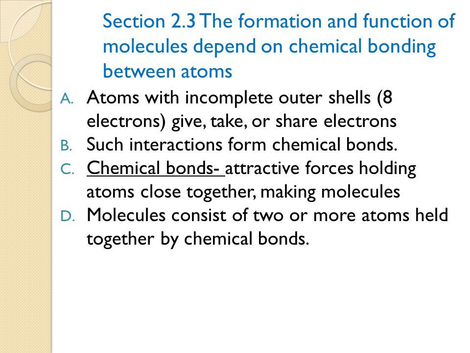 Section 2. 3 The formation and function of
