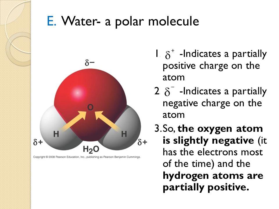 E. Water- a polar molecule