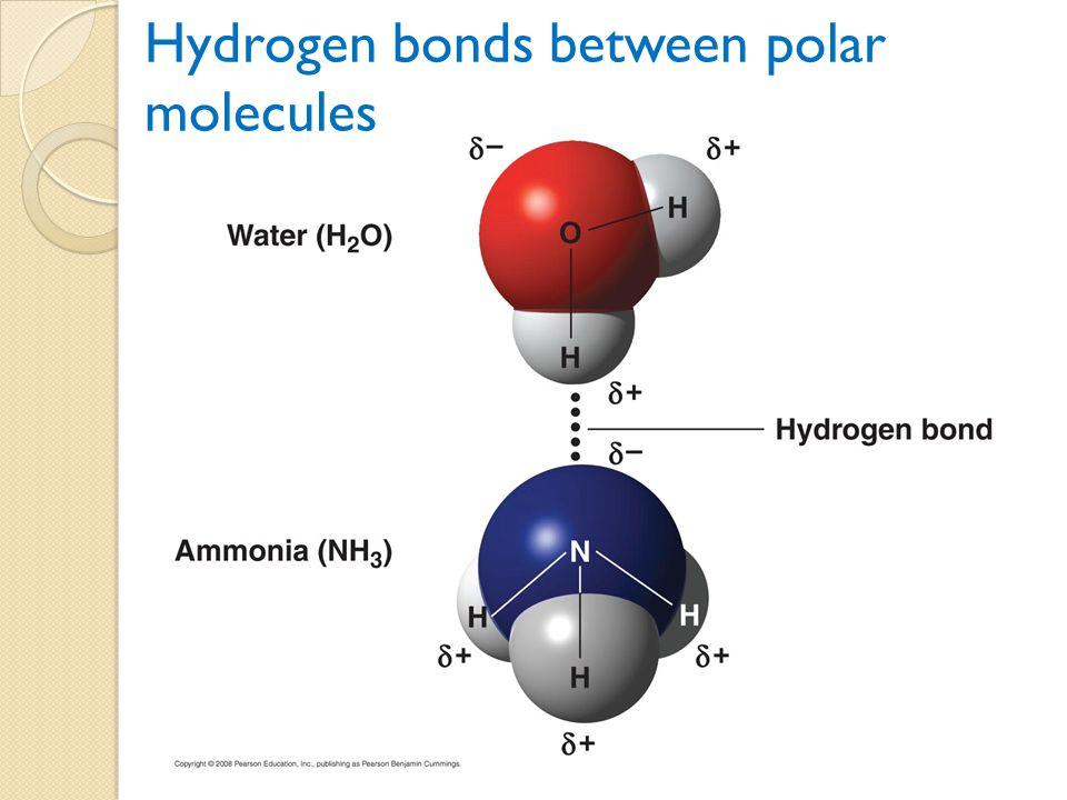 Hydrogen bonds between polar molecules