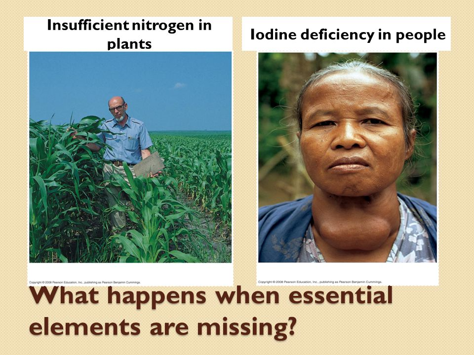 What happens when essential elements are missing