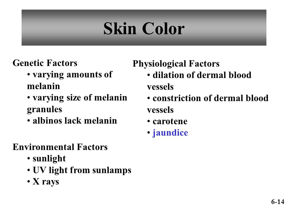 Skin Color Genetic Factors Physiological Factors