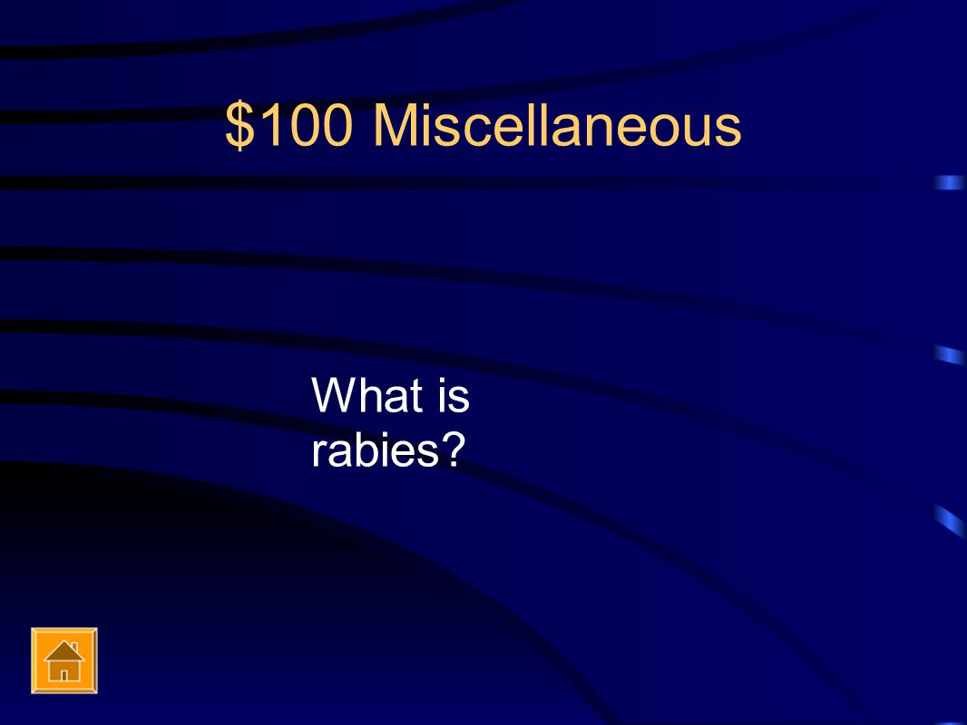 $100 Miscellaneous What is rabies