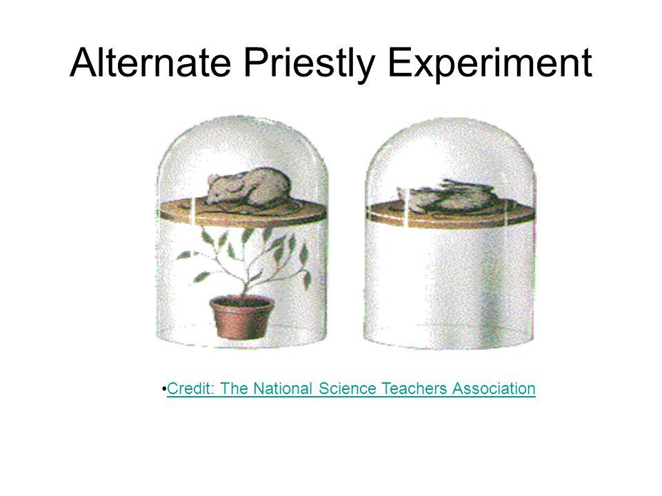 Alternate Priestly Experiment