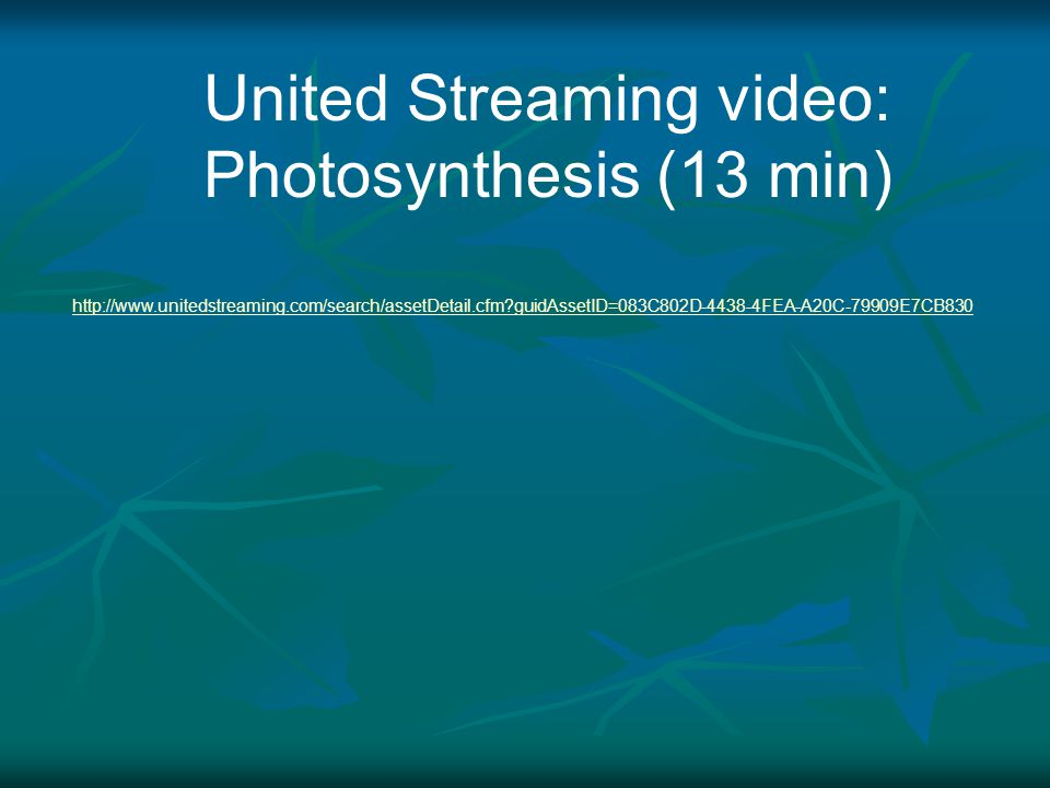United Streaming video: Photosynthesis (13 min)