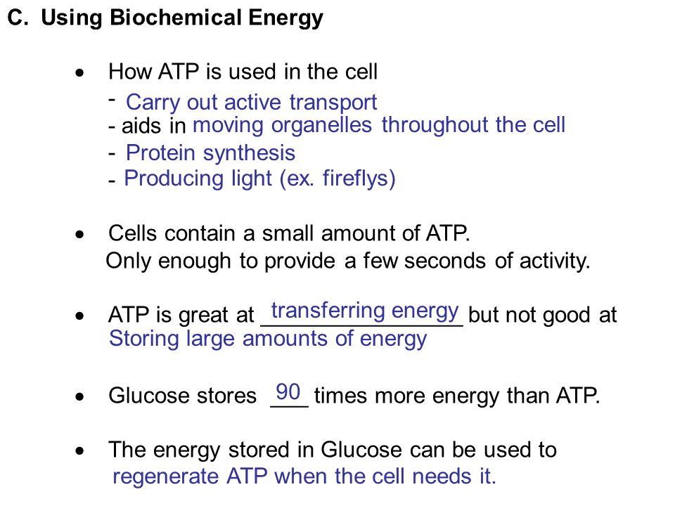 Using Biochemical Energy