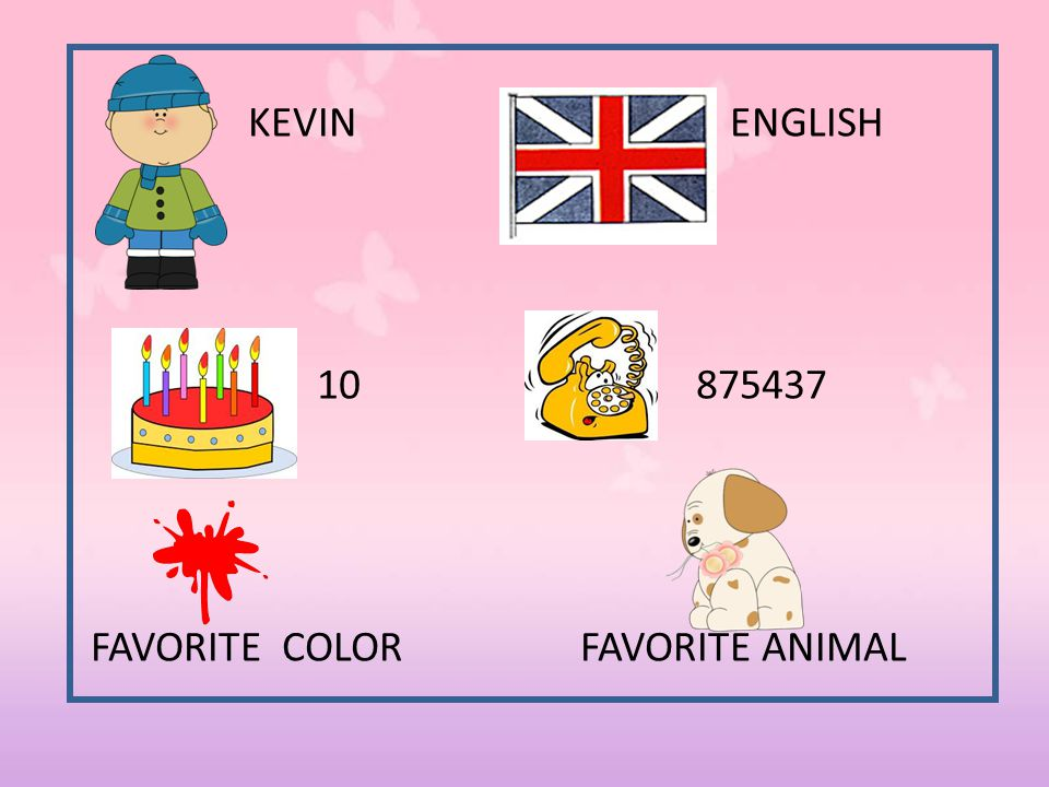 KEVIN ENGLISH 10 875437 FAVORITE COLOR FAVORITE ANIMAL