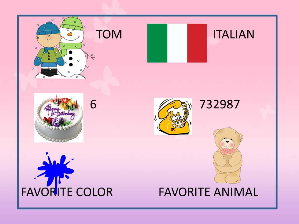 TOM ITALIAN 6 732987 FAVORITE COLOR FAVORITE ANIMAL