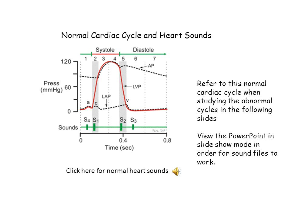 Normal Cardiac Cycle and Heart Sounds