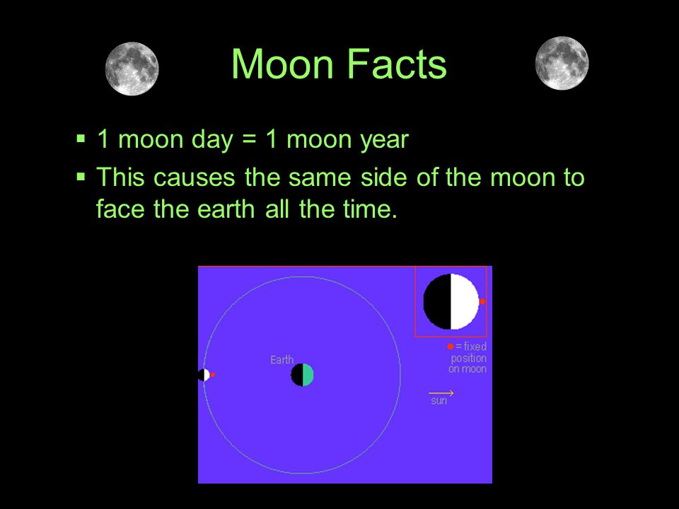 Moon Facts 1 moon day = 1 moon year