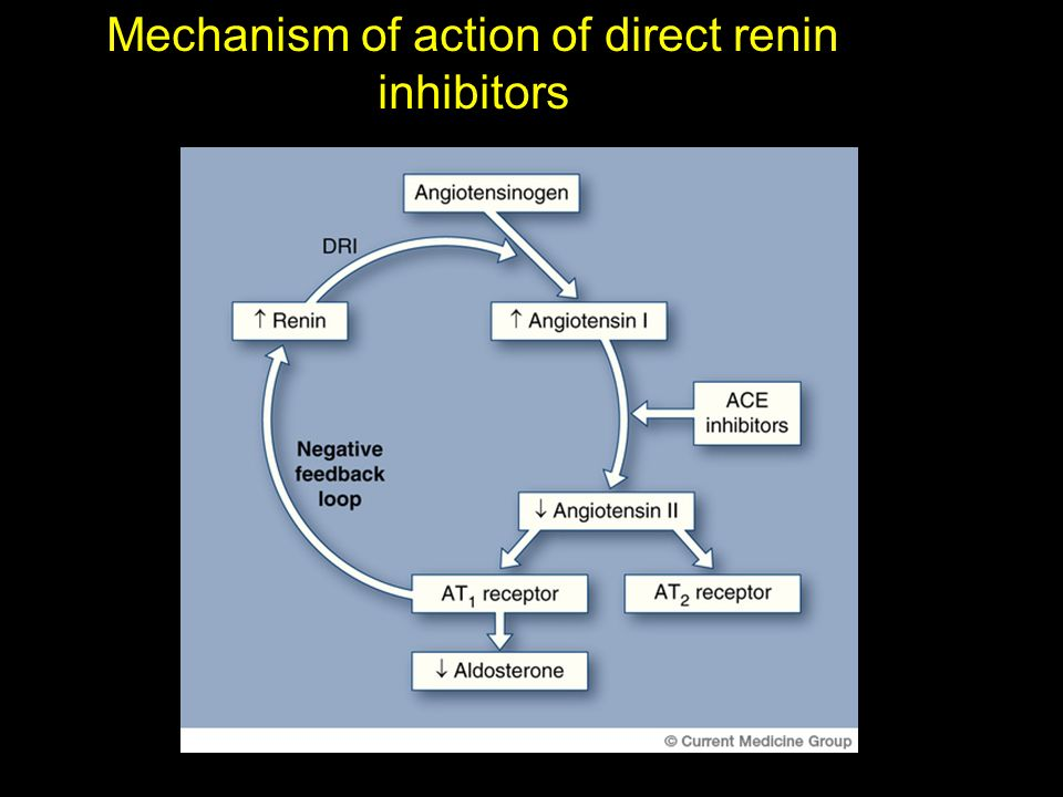 Mechanism of action of direct renin inhibitors