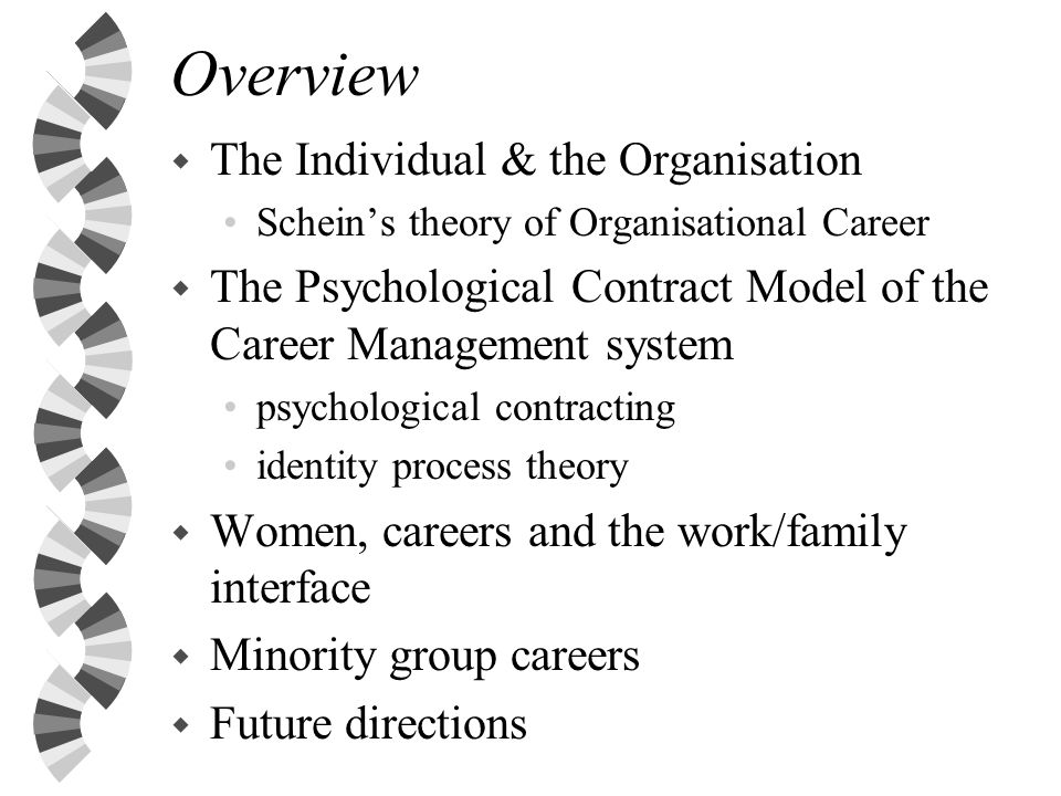 Overview The Individual & the Organisation