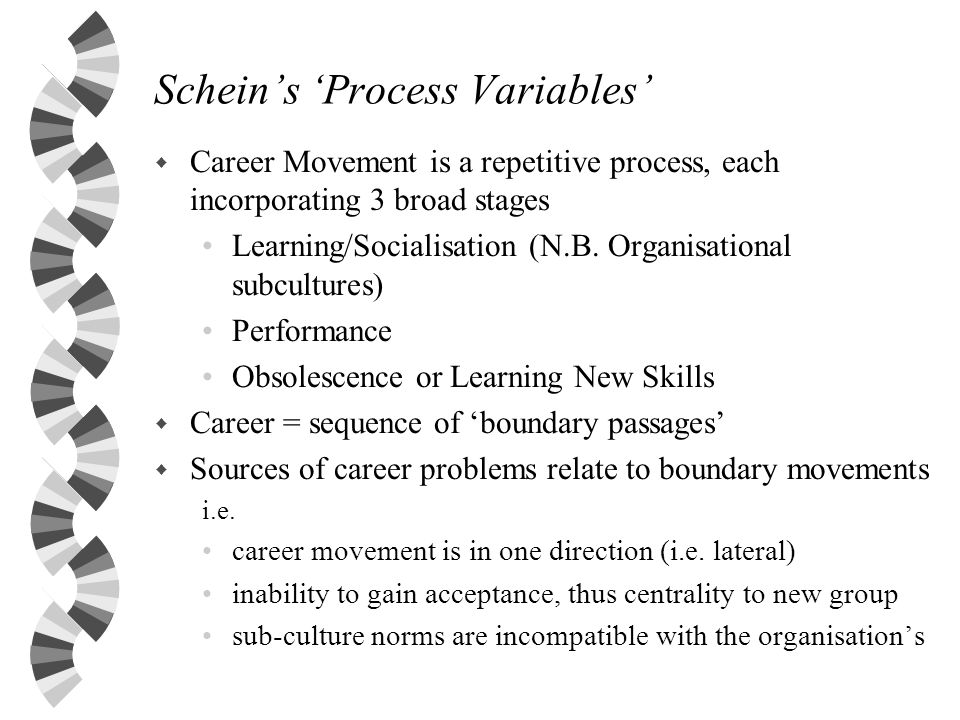 Schein's 'Process Variables'