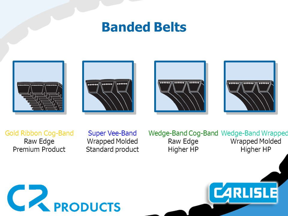 Banded Belts Gold Ribbon Cog-Band Raw Edge Premium Product