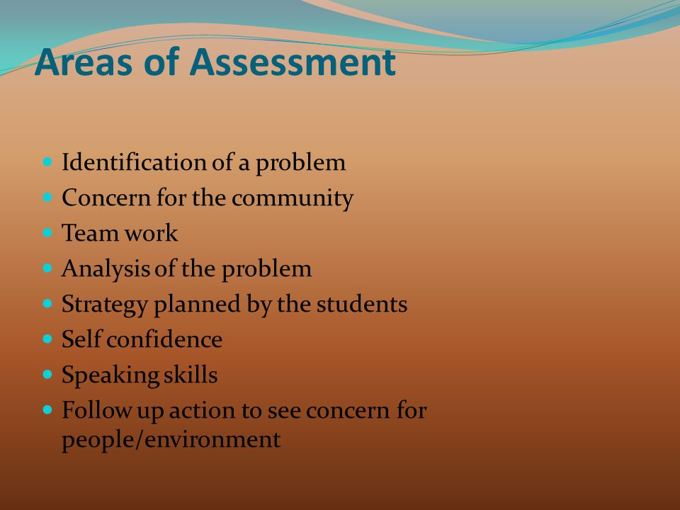 Areas of Assessment Identification of a problem