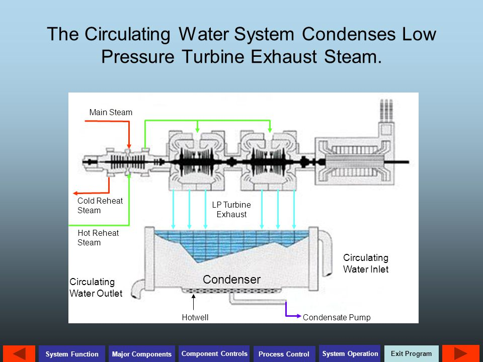 The Circulating Water System Condenses Low Pressure Turbine Exhaust Steam.