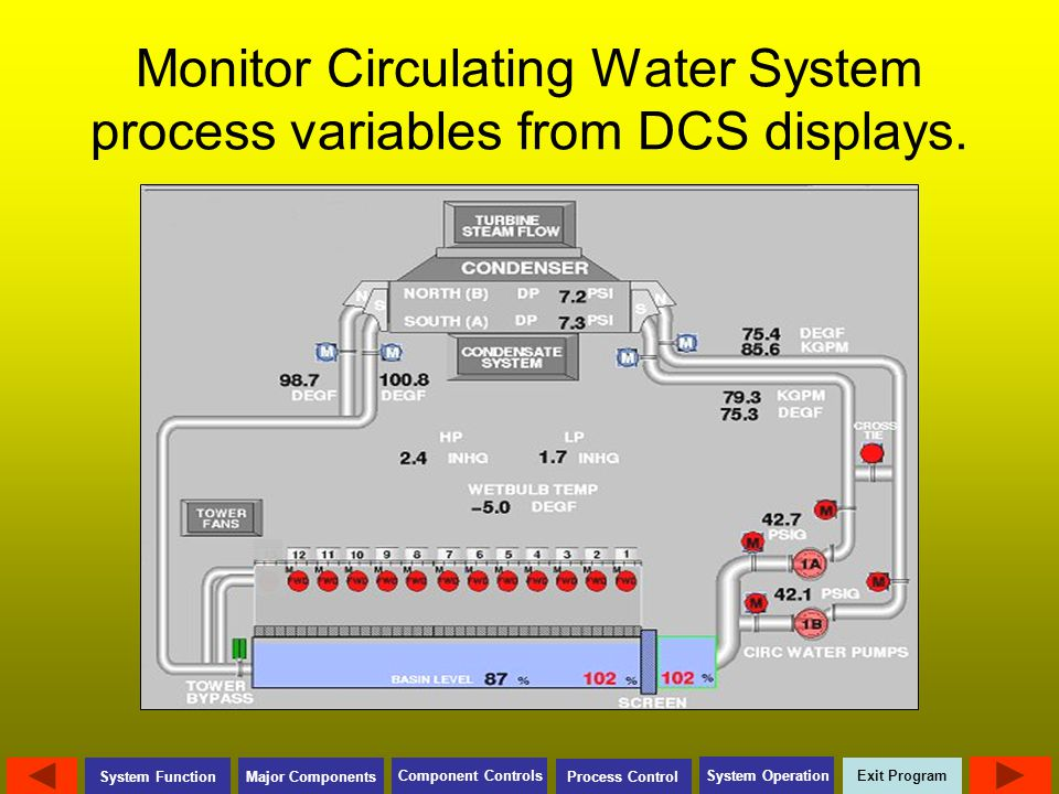 Monitor Circulating Water System process variables from DCS displays.