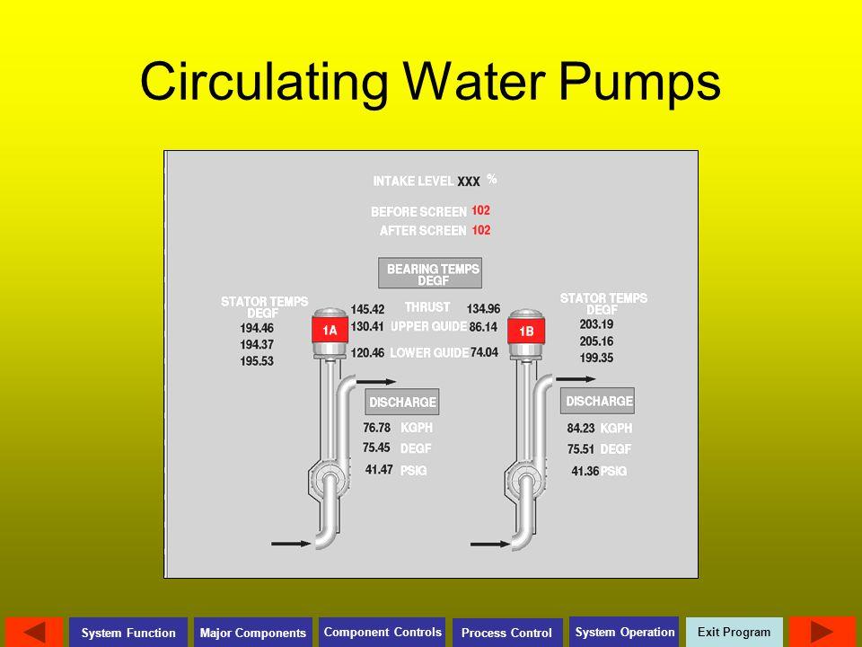Circulating Water Pumps