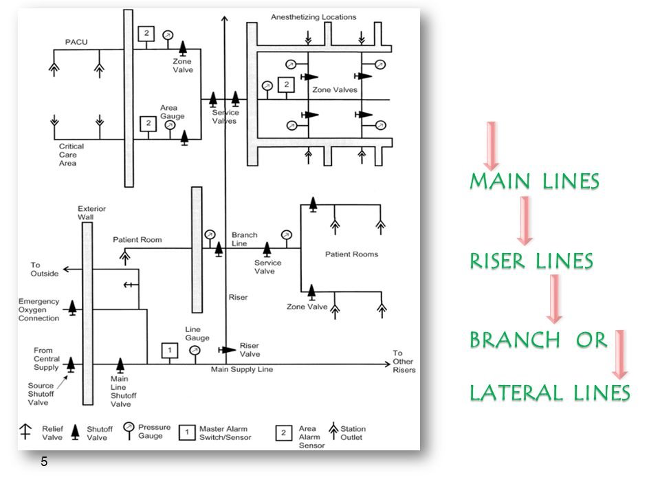 MAIN LINES RISER LINES BRANCH OR LATERAL LINES
