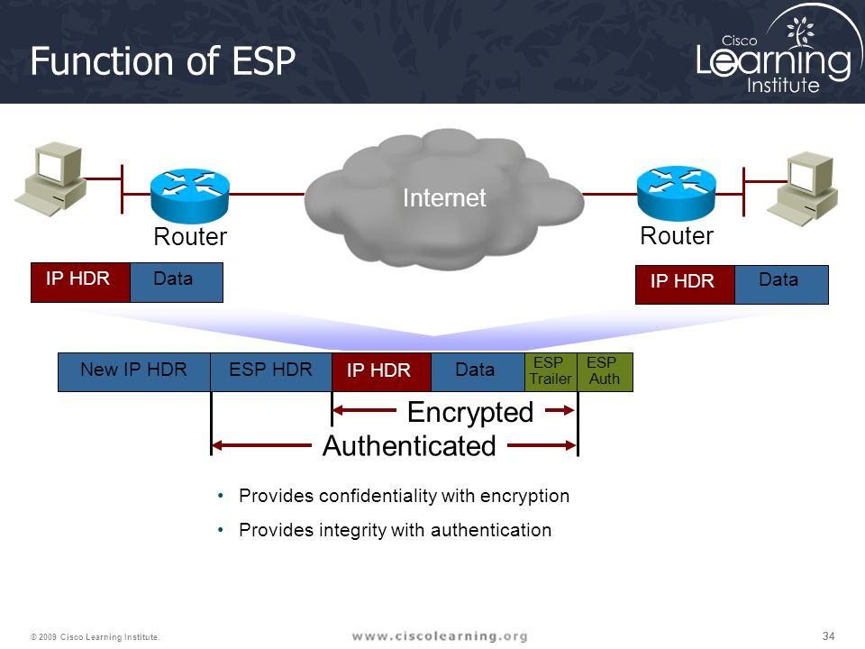 Function of ESP Encrypted Authenticated Internet Router Router IP HDR