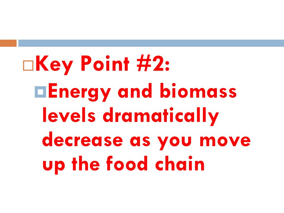 Key Point #2: Energy and biomass levels dramatically decrease as you move up the food chain