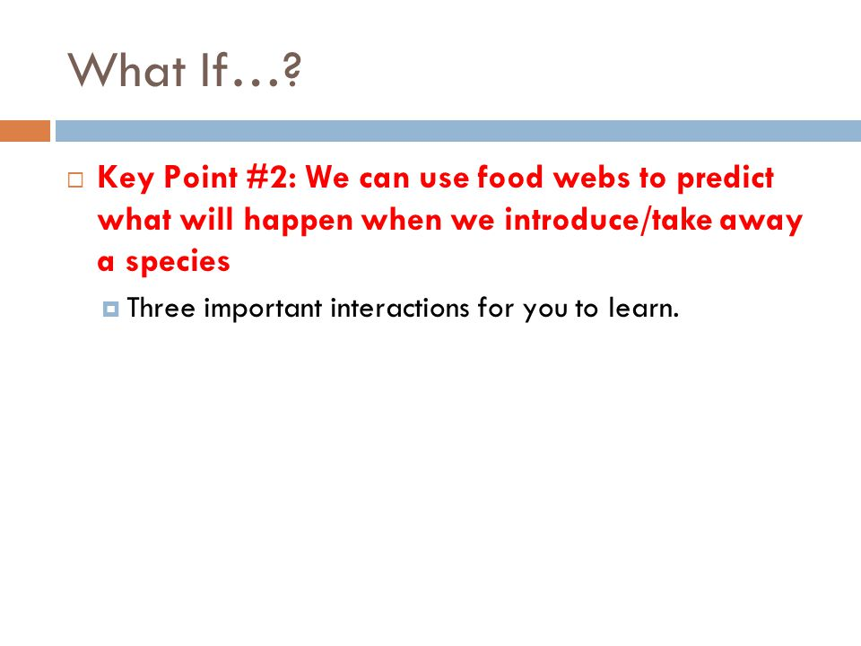 What If… Key Point #2: We can use food webs to predict what will happen when we introduce/take away a species.