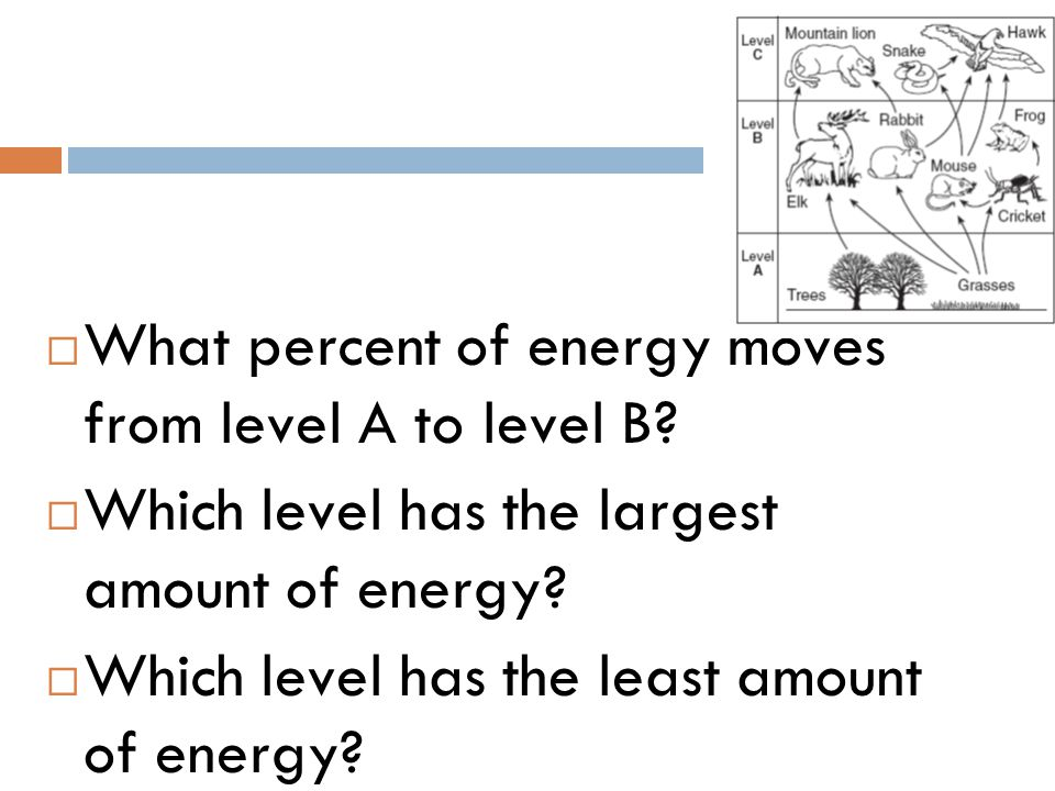 What percent of energy moves from level A to level B