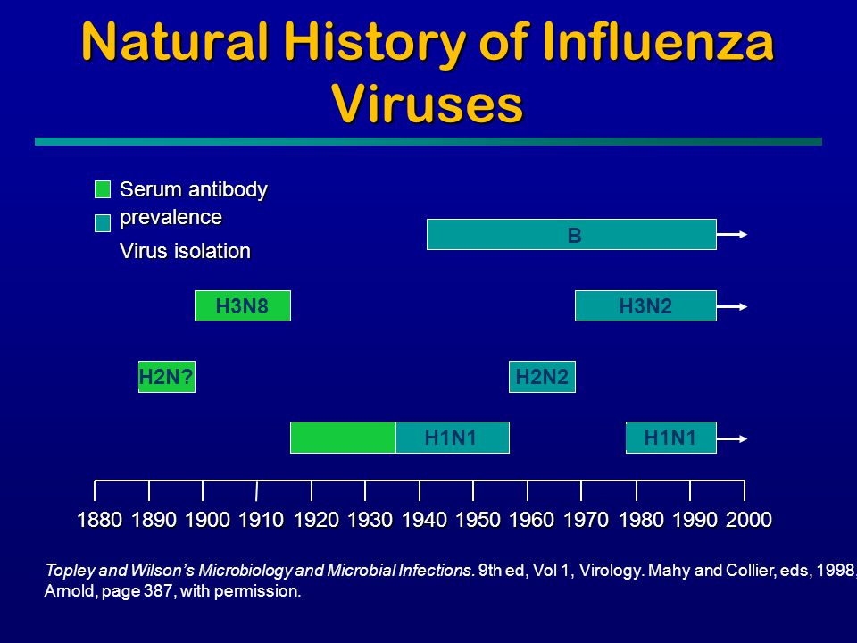 Natural History of Influenza Viruses