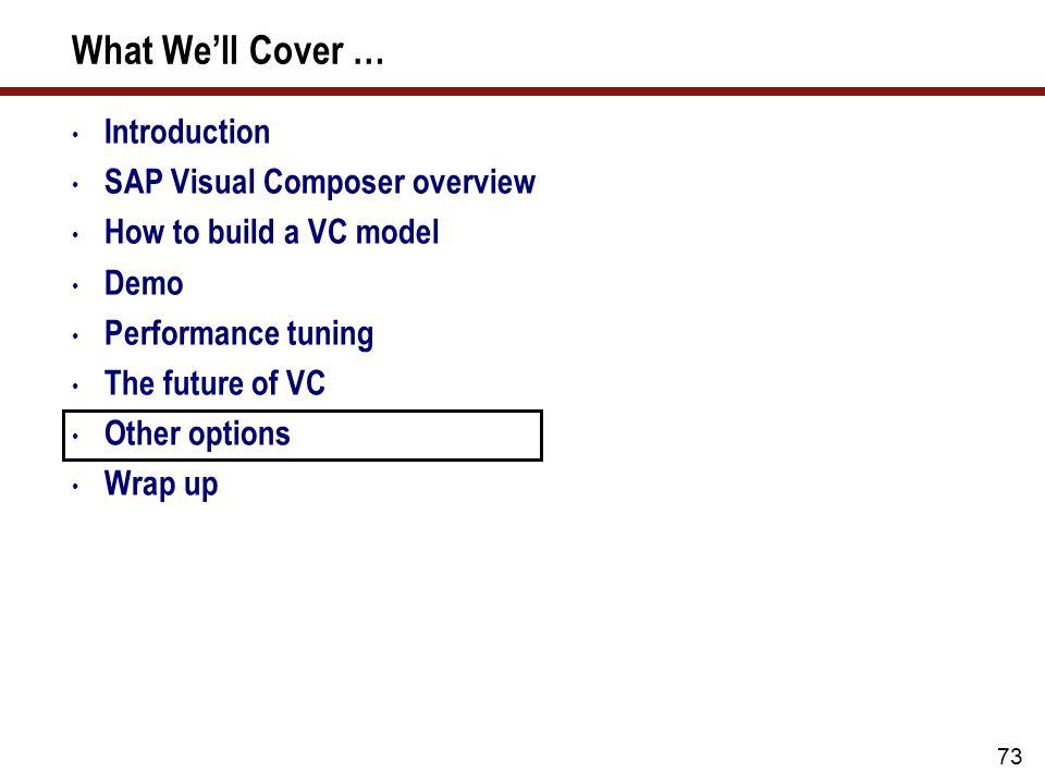 SAP Visual Composer Options