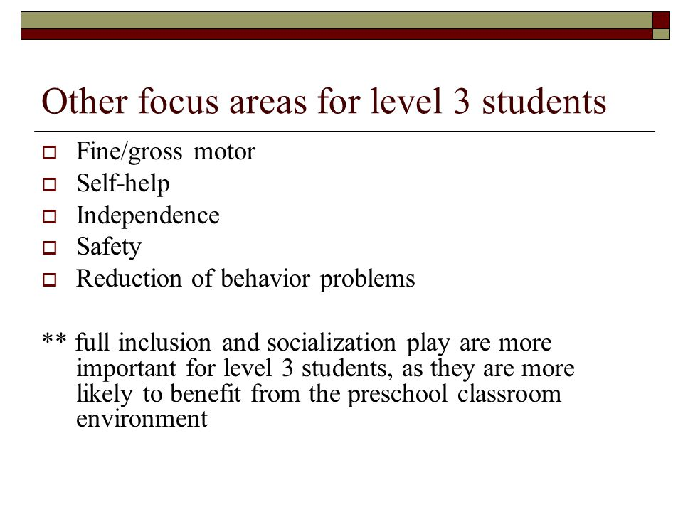 Other focus areas for level 3 students
