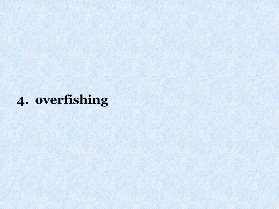 4. overfishing