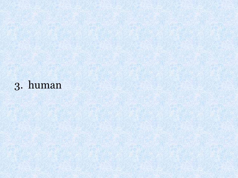 3. human