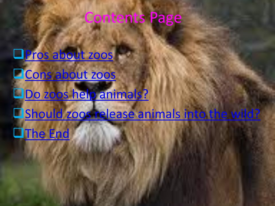 the pros and cons of zoos The various arguments in favour of and against a motion, course of action, etc.