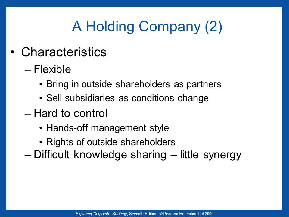 A Holding Company (2) Characteristics Flexible Hard to control