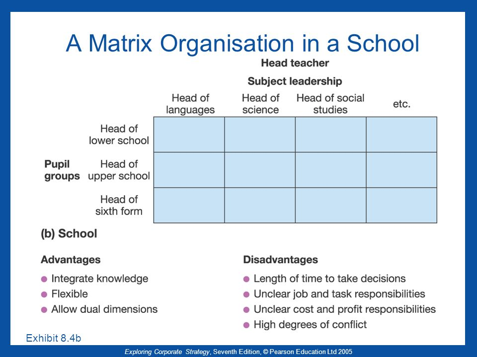 A Matrix Organisation in a School