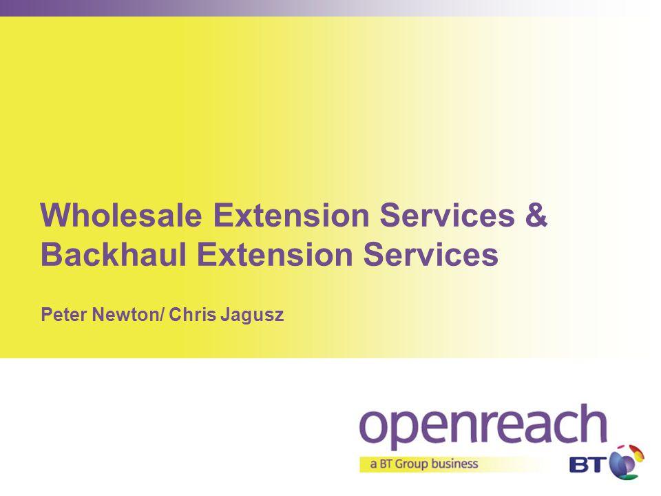 Wholesale Extension Services & Backhaul Extension Services