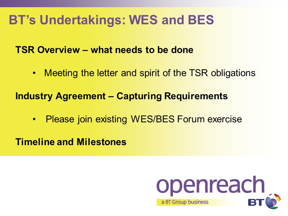 BT's Undertakings: WES and BES