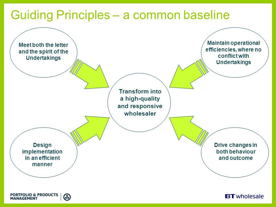 Guiding Principles – a common baseline