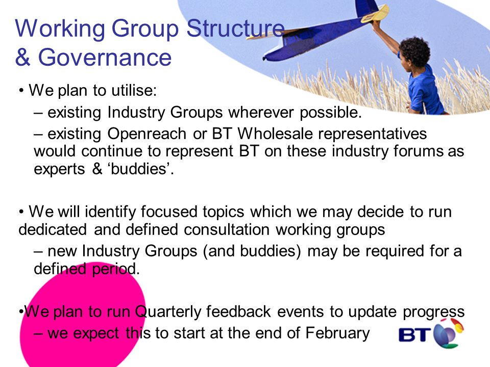Working Group Structure & Governance