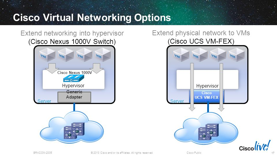 Cisco Virtual Networking Options