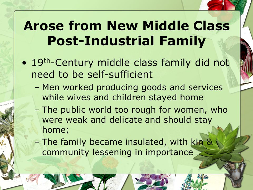 Arose from New Middle Class Post-Industrial Family