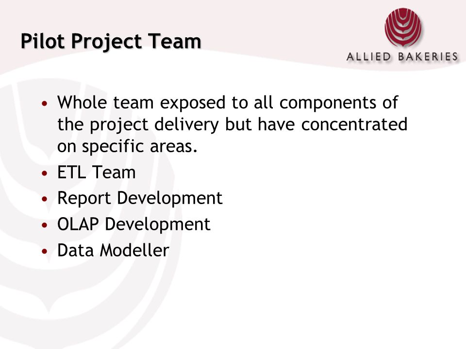 Pilot Project Team Whole team exposed to all components of the project delivery but have concentrated on specific areas.