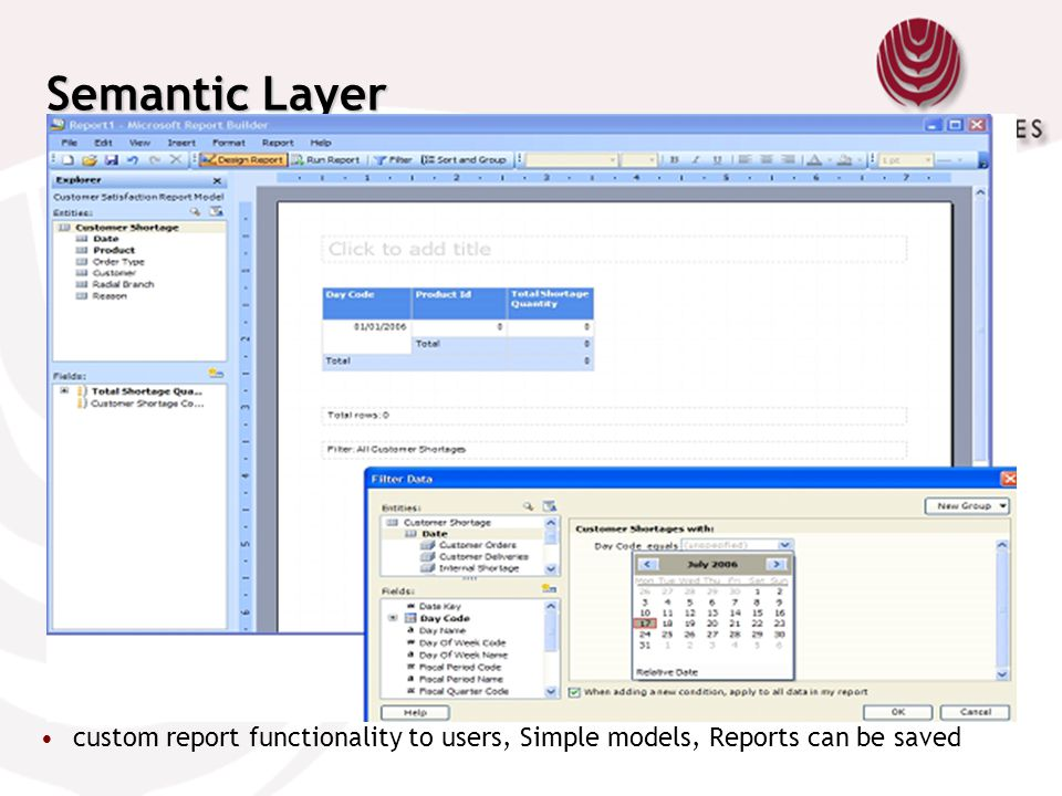 Semantic Layer Uses Reporting Services Report Builder technology to provide custom report functionality to users.